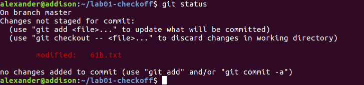 Git Exercise Status